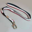 BMW Motorsport Basic Lanyard